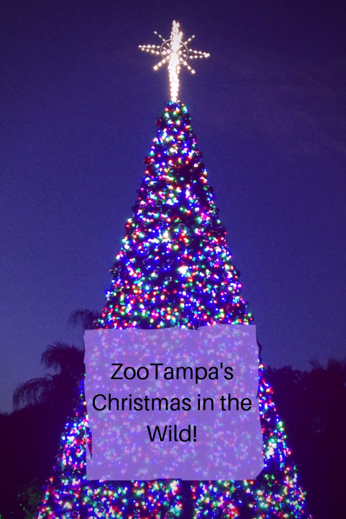 ZooTampa Christmas in the Wild
